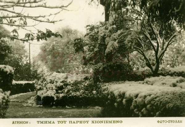 1959xythalis