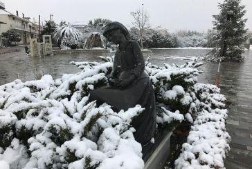 Eκπληκτικό φωτογραφικό oδοιπορικό στο χιονισμένο Παναιτώλιο