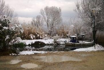 Η κάθοδος του χιονιά στην Τριχωνίδα