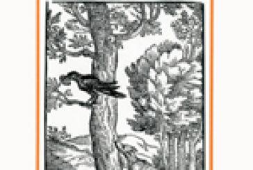 Γεώργιος ο Αιτωλός: Ο συγγραφέας που έσωσε  τους μύθους του Αισώπου