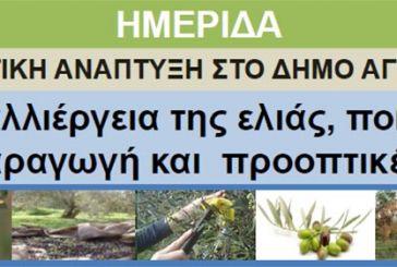 Ημερίδα στη Ματαράγκα για την καλλιέργεια της ελιάς