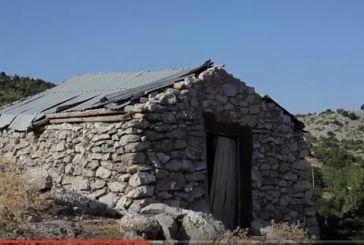 Nτοκιμαντέρ για τους βοσκούς «Στα βουνά του Βάλτου Αιτωλοακαρνανίας» (video)