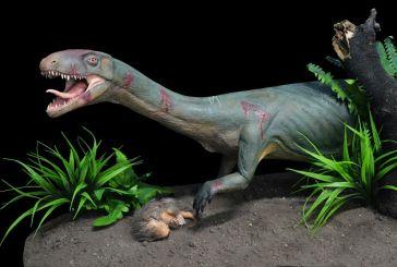 Παλαιοντολογία – Ανακαλύφθηκε σημαντικός «ξάδερφος» των δεινοσαύρων που έμοιαζε με κροκόδειλο