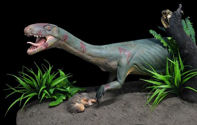 Στενός+συγγενής+δεινοσαύρων+Πηγή+Museo+Argentino+de+Ciencias+Naturales