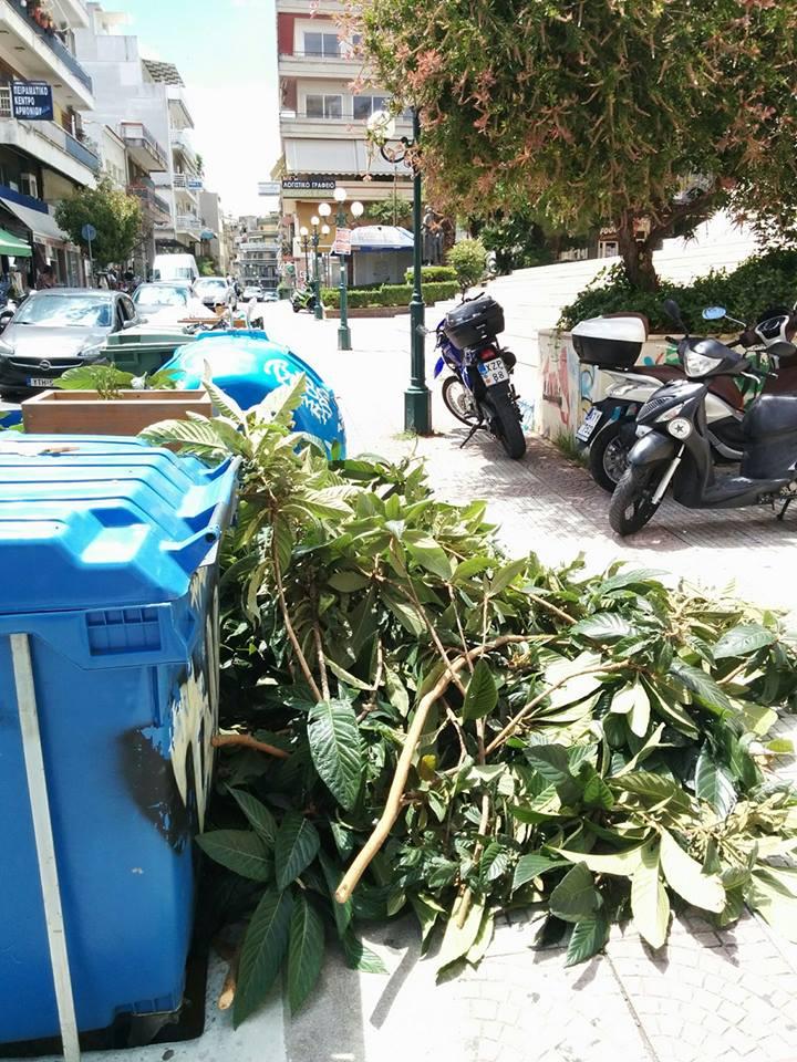 Αγρίνιο: το φωτορεπορτάζ του αντιδημάρχου καθαριότητας…