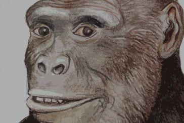 Νέα έρευνα: Πιθανότατα στην Ελλάδα εμφανίσθηκε ο πρώτος Άνθρωπος