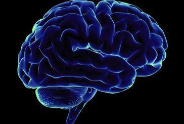 Η ARM σχεδιάζει ένα τσιπάκι για τον «επαναπρογραμματισμό» του εγκεφάλου