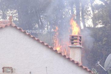 Μια νεκρή στη φωτιά στους Αγίους Θεοδώρους – Κάηκαν σπίτια