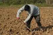 Νέοι αγρότες: Εντάχθηκαν 294 επιπλέον δικαιούχοι στη Δυτική Ελλάδα