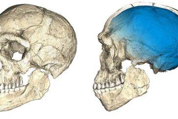Αλλάζει η ιστορία της ανθρωπότητας: Βρέθηκε Homo Sapiens 300.000 χρόνων στο Μαρόκο