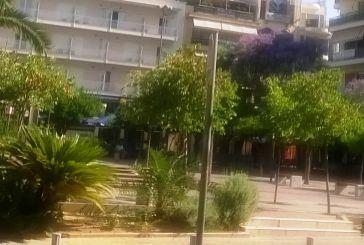 Οι τζακαράντες, ο Σεφέρης και η κεντρική Πλατεία του Αγρινίου