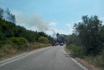 Εμπρησμός η φωτιά  στο πευκόδασος της Σπολάιτας-Σωτήρια η άμεση κινητοποίηση κατοίκων και πυροσβεστικής