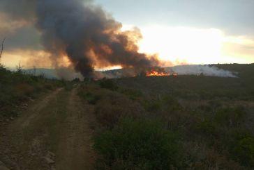 Σε ύφεση η φωτιά στα Αμπέλια