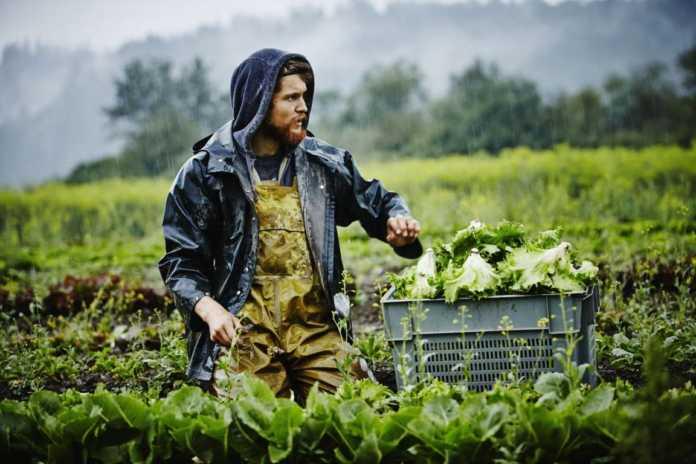 Βαρεμένος: Γιατί μπλοκάρει στην Αιτωλοακαρνανία η διάθεση ακινήτων του δημοσίου σε νέους αγρότες