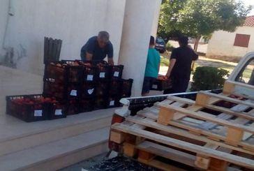 Διανομή φρούτων από το Κοινωνικό Παντοπωλείο στα Καλύβια