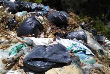 Καταγγελίες για μετατροπή του δάσους στον Κάλαμο σε σκουπιδότοπο