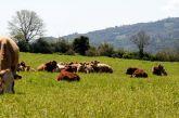 Πίστωση ενισχύσεων σε δικαιούχους βιολογικών δράσεων ζωικής παραγωγής στη Δυτική Ελλάδα