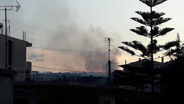 Φωτιές χθες στο βελανιδοδάσος στην Παλιομάνινα και στην παλαιά χωματερή Βόνιτσας