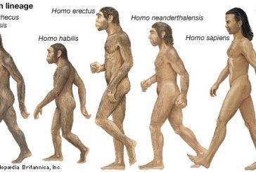 Ο Homo sapiens αναδύθηκε νωρίτερα στην Αφρική, ίσως και πριν από 350.000 χρόνια, σύμφωνα με νέα μελέτη