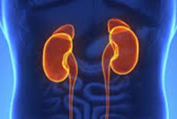 Τι είναι η νόσος των νεφρών και πως μπορεί να αντιμετωπιστεί