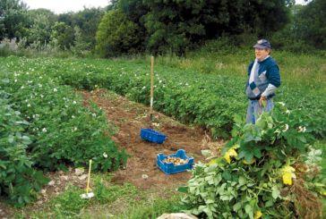 Πληρωμή βιολογικής γεωργίας σε δικαιούχους της Αιτωλοακαρνανίας
