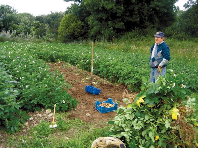 Πληρωμές για βιολογική γεωργία και σπάνιες φυλές