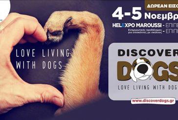 Οι ζωοφιλικές οργανώσεις πρωταγωνίστριες στο φεστιβάλ «Discover Dogs 2017»