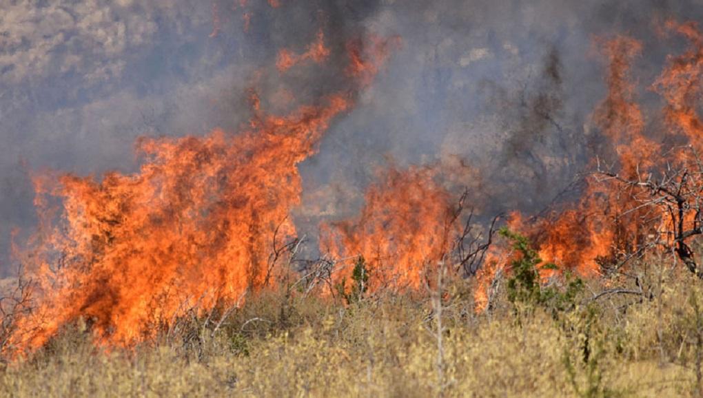 Φωτιά στις Φυτείες προκλήθηκε από… δημοτικά έργα