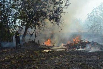 Δυο συλλήψεις για τη φωτιά στο Καρπενήσι