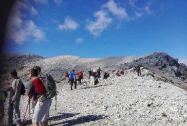 Κομπωτή: Μεγάλη συμμετοχή στην πεζοπορία στην κορυφή του Μπούμστου (φωτο)
