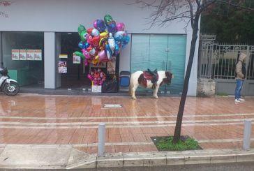Το ανοιχτό μαγαζάκι στο Αγρίνιο και το μοναχικό πόνυ στην πλατεία…