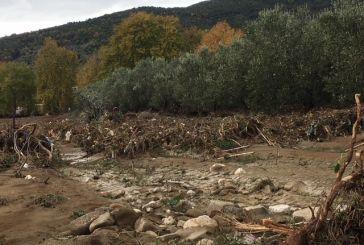 Αυτοψία  γεωλόγων του ΓΕΩΤ.Ε.Ε. σε πληγείσες περιοχές της Αιτωλοακαρνανίας