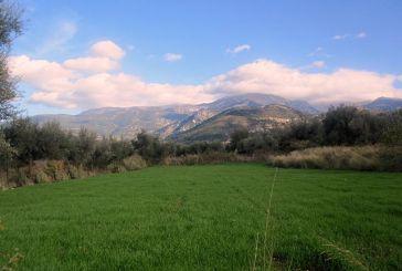 Οικολογική Δυτική Ελλάδα: Στη νέα χρονιά να συμβαδίσουμε με τις δυνάμεις του μέλλοντος