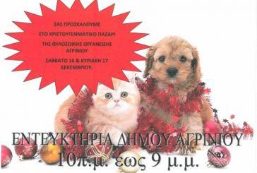 Χριστουγεννιάτικο παζάρι της Φιλοζωικής Οργάνωσης Αγρινίου 16 & 17 Δεκεμβρίου