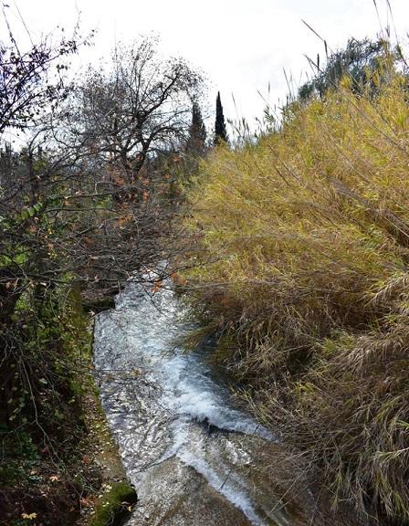 Το ποταμάκι Μοκιστιάνος λίγο πριν την κατάληξή του στη λίμνη