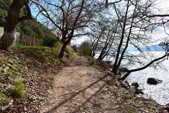 Τμήμα της παραλίμνιας πεζοπορικής & ποδηλατικής διαδρομής Μυρτιά - Σιταράλωνα