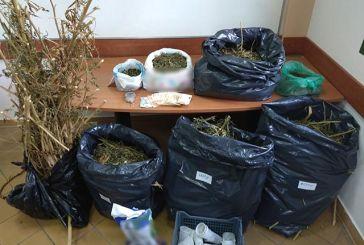 Έτσι συνελήφθη ο 41χρονος για διακίνηση ναρκωτικών: από το στάβλο στο Δοκίμι έως το σπίτι στο Ξηρόμερο
