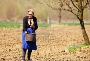 Αγρότισσα: Κολώνα του σπιτιού στη σκιά του άντρα