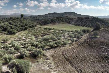 Φάμελλος προς τους Δημάρχους (και) της Αιτωλοακαρνανίας: αναρτήστε τα όρια οικισμών και οικιστικών πυκνώσεων για τους Δασικούς Χάρτες