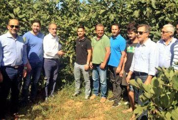 Δυτική Ελλάδα: Επιπλέον 177 νέοι αγρότες εντάσσονται στο Υπομέτρο 6.1 «Εγκατάσταση Νέων Γεωργών» του ΠΑΑ 2014-2020