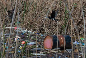 Λαθροθηρία, ρύπανση και αυθαίρετη δόμηση στη Λιμνοθάλασσα Μεσολογγίου-Αιτωλικού