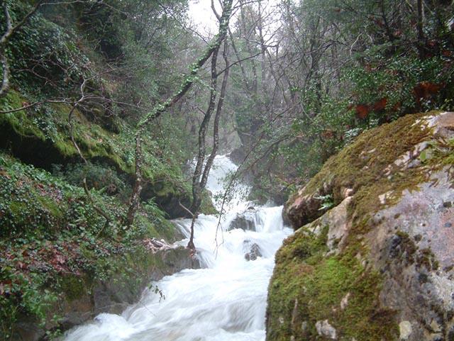 Το ρέμα του Νεροχωρίου σε ώρα πλημμύρας, όπως διακρίνεται από τη συμβολή του με το ρέμα του Κεφαλόβρυσου.