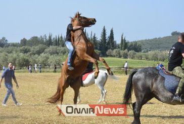 Αναβίωσαν και φέτος οι ιπποδρομίες στον Άγιο Γεώργιο Μεσολογγίου