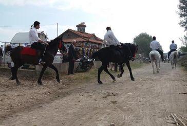 Εντυπωσίασαν τα άλογα στο εξωκλήσι του Αγίου Γεωργίου στα Καλύβια