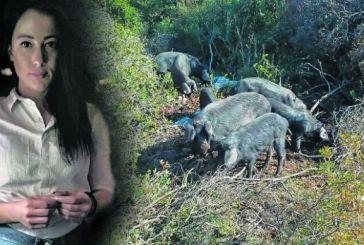 Η 27χρονη από το Αγρίνιο που εκτρέφει μαύρους χοίρους