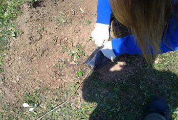 Let's Do It Greece: Εθελοντικές δράσεις καθαρισμού στην ορεινή Τριχωνίδα