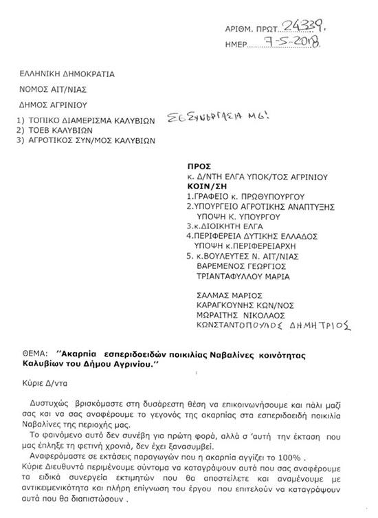 anafora-kke (1)