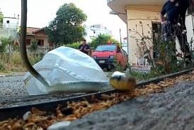 Βίντεο: H διάσωση ενός λαφιάτη στο Αγρίνιο