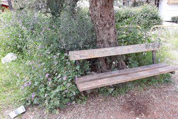 Άγριο οικοσύστημα πνίγει την δημοτική παιδική χαρά στον Αη Γιάννη Ρηγανά