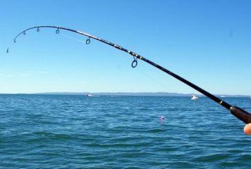 Τρία αλιεύματα του Αμβρακικού προωθούνται για ΠΟΠ